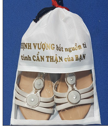 Túi bảo quản giày dép