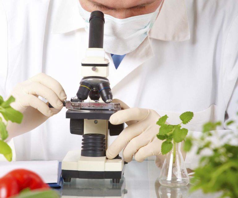 Nghiên cứu thực phẩm