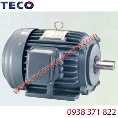 Motor-TECO-AESV