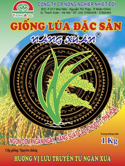 Lúa Nàng Xuân