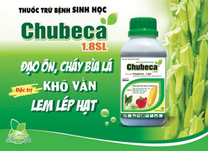 Chubeca