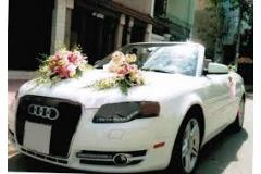 Cho thuê xe cưới
