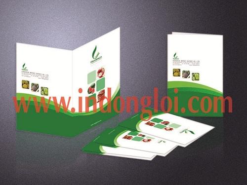 Thiết kế folder Vinagrinco