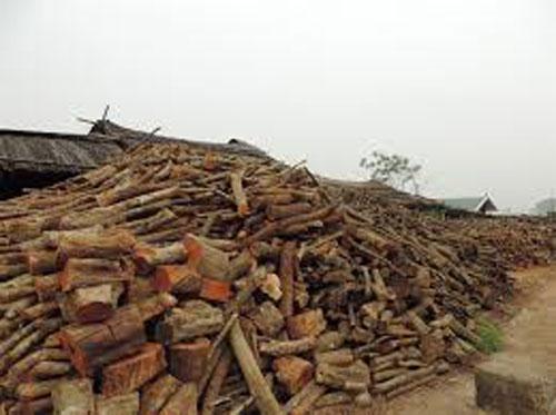 Chất đốt công nghiệp từ gỗ
