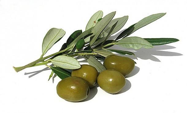 Hương oliu
