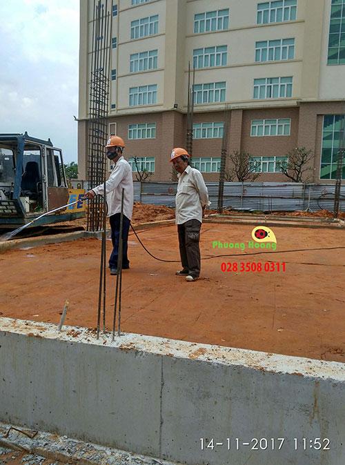 Dịch vụ diệt mối công trình xây dựng