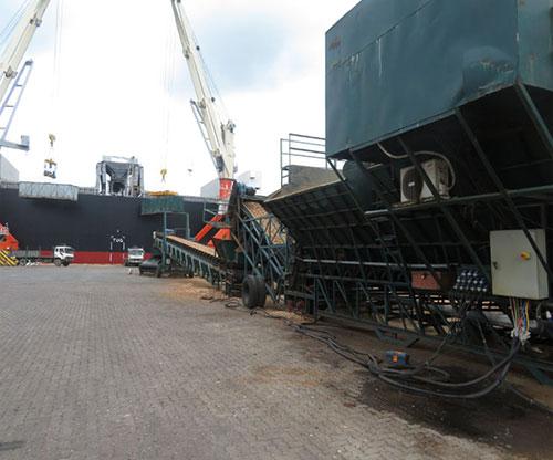 Băng tải dăm gỗ lên bãi