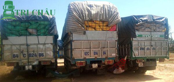 Vận chuyển đi Bình Định