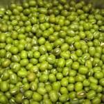 Hạt đậu xanh