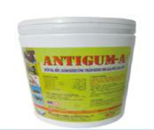 Antigum-a