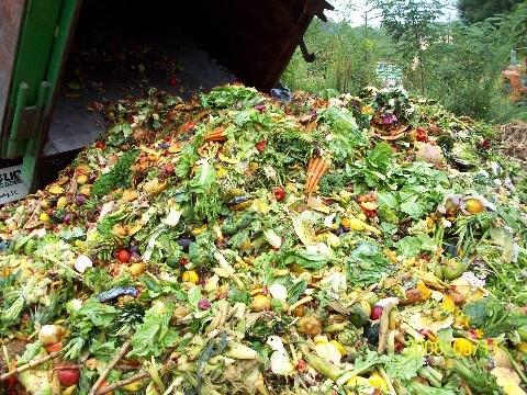 Chế phẩm EMUNIV ủ phân hữu cơ
