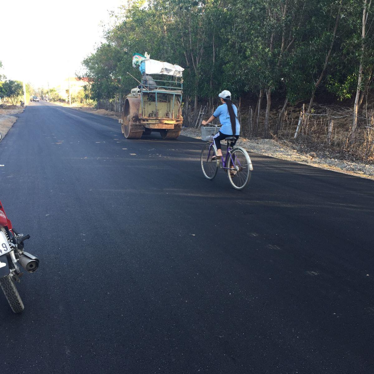 Đường D1, Long Biên - Tỉnh Bà Rịa Vũng Tàu
