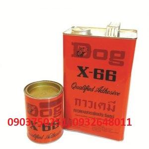 DOG X66