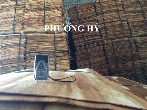 Ván lạng gỗ keo