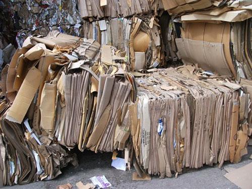 Thu mua giấy phế liệu