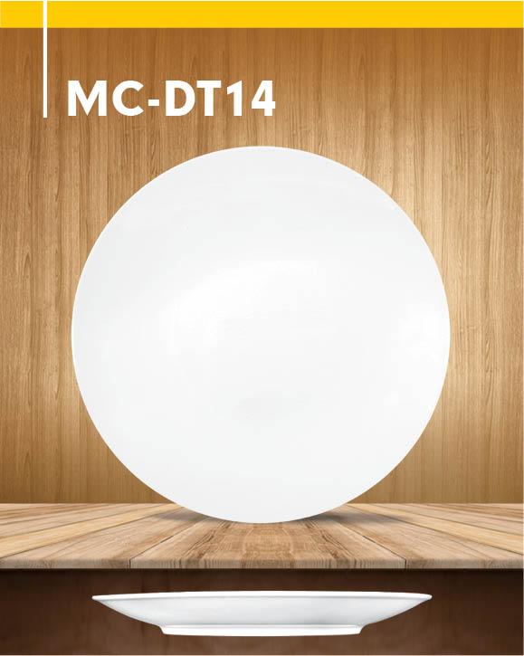 MC-DT04