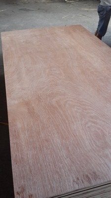 PLYWOOD WITH MELAMIN GLUE 15%