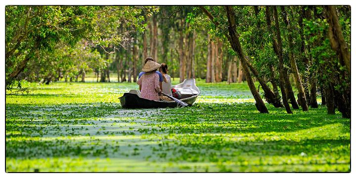 Du lịch Rừng Tràm Trà Sứ, Thiên Cẩm Sơn