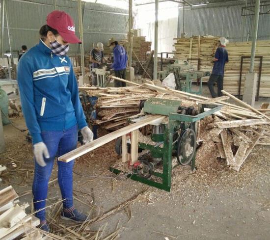 Gia công cưa, xẻ gỗ