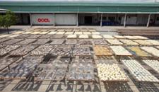 Nhà máy chế biến hải sản khô tại HCM