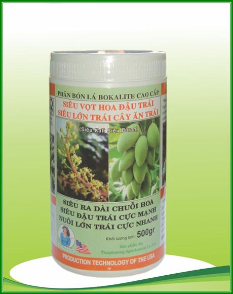 Siêu vọt hoa đậu trái siêu lớn trái cây ăn trái