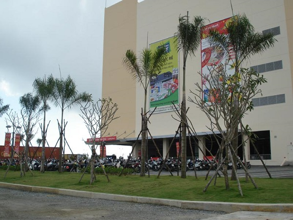 Cây xanh hệ thống Lotte Việt Nam