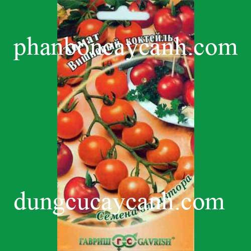 Hạt giống mini cà chua
