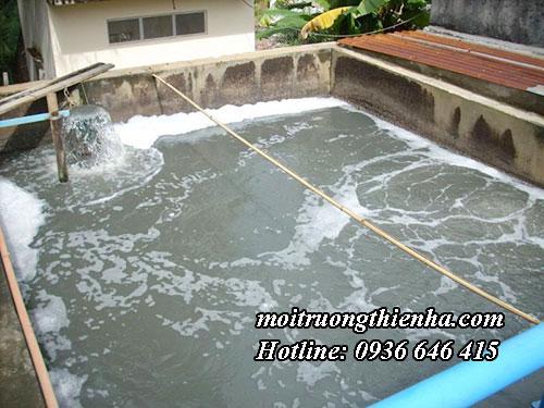 Xử lý nước thải tại Hải Phòng