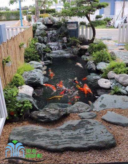 Thiết kế, thi công hồ cá Koi