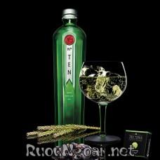 Gin No Ten 1L.