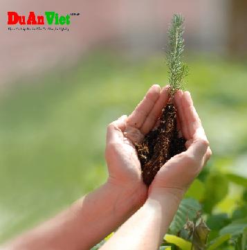 Nghiên cứu tác động đến môi trường Đất