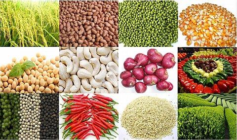Xuất nhập khẩu nông sản
