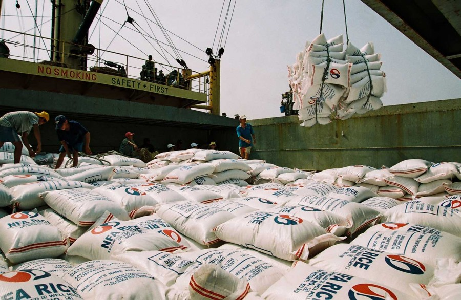Xuất khẩu gạo số lượng lớn