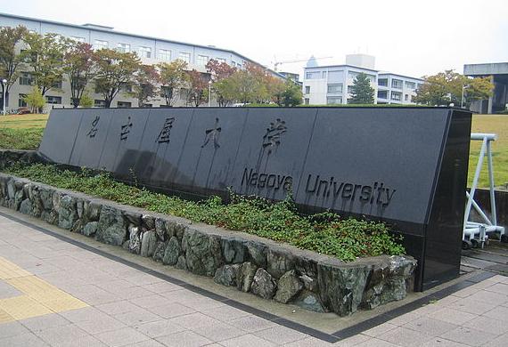 Đào tạo đại học
