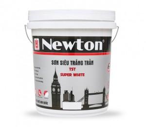 Sơn siêu trắng trần Newton