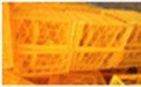 Rổ đựng sầu riêng