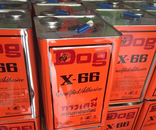 Keo Dog X66 (15kg)