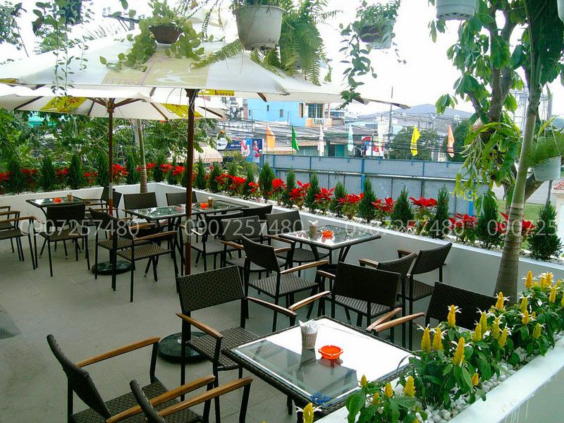 Thiết kế cảnh quan quán cafe