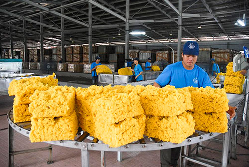 Sản xuất cao su thô