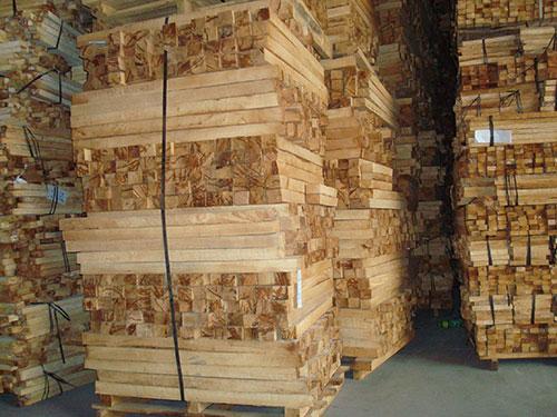 Sản xuất nguyên liệu gỗ cao su