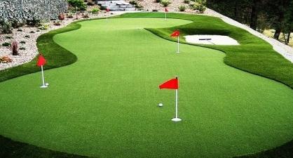 Cỏ golf CG1