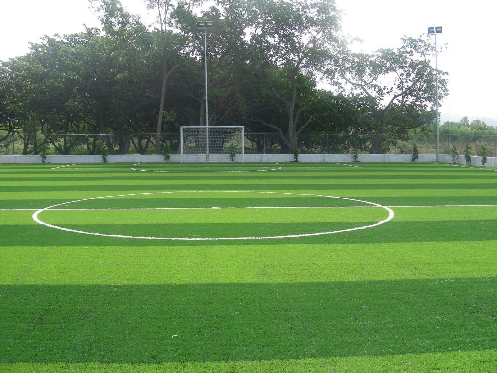 Cỏ nhân tạo sân bóng đá CB1