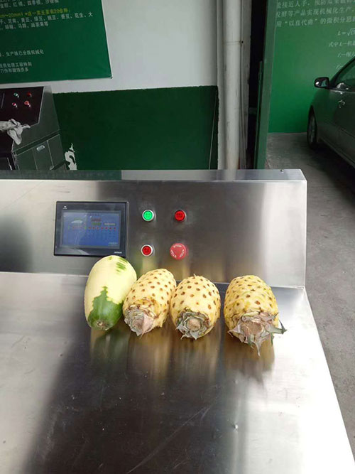 Máy gọt vỏ trái cây