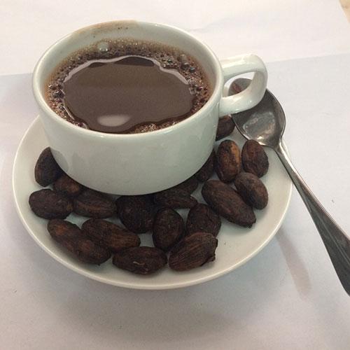 Sữa Cacao