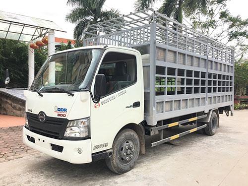 Ô tô chở gia súc