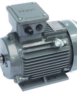 Motor điện Teco chân đế 0.75kw