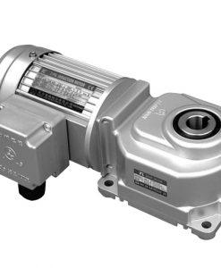 Motor giảm tốc cốt âm TL4060