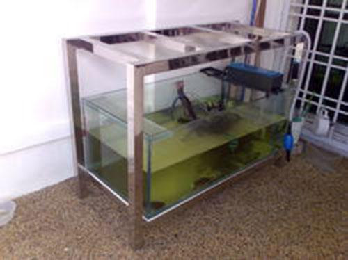 Kệ hồ cá inox