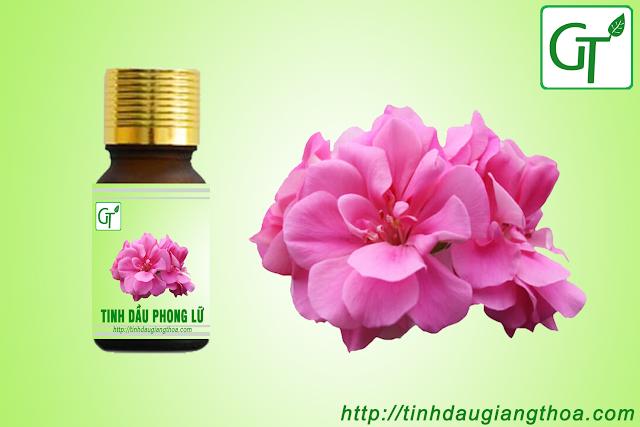 Tinh dầu hoa phong lữ