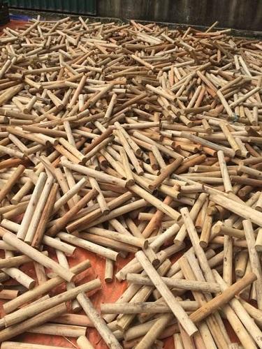 Cọc gỗ